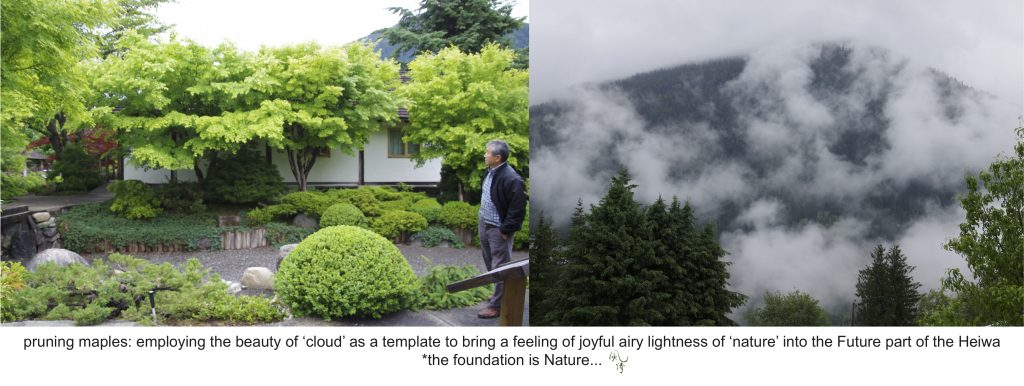 clouds in mountains becomes the template for pruning maples